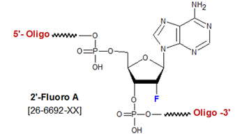 picture of 2'-Fluoro deoxyadenosine (2'-F-A)