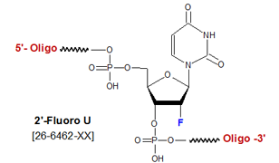 picture of 2'-Fluoro deoxyuridine (2'-F-U)