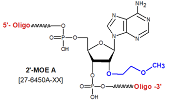 picture of 2'-O-methoxy-ethyl Bases (2'-MOE)