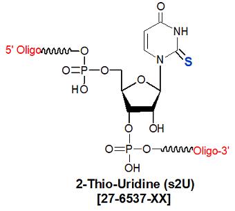 picture of 2-Thio-Uridine (s2U)
