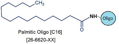 picture of Palmitic Oligo [C16] LMO