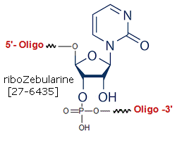 picture of rZebularine