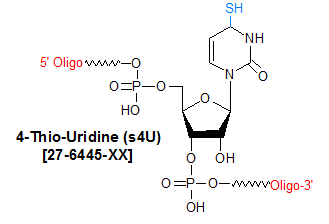 picture of 4-Thio-Uridine (s4U)