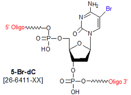 picture of 5-bromo deoxycytosine (Br dC)