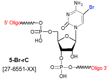picture of 5-bromo ribocytosine (5-Br C)