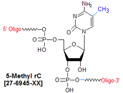 picture of 5-methyl-Cytosine-(5-Me-rC)