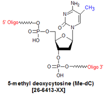 picture of 5-methyl deoxycytosine (5Me-dC)