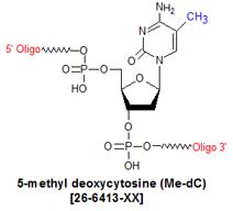 picture of 5-methyl deoxycytosine (5Me-dC)