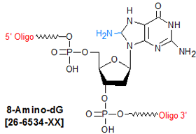 picture of 8-Amino-dG