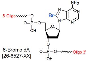picture of 8-bromo dA (8-Br dA)
