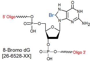 picture of 8-bromo dG (8-Br dG)