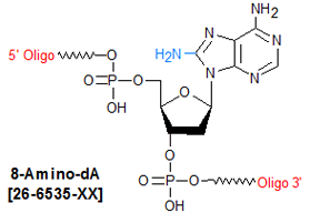 picture of 8-amino-dA