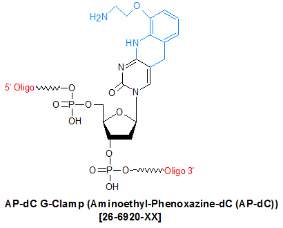 picture of AP-dC G-Clamp (Aminoethyl-Phenoxazine-dC (AP-dC))
