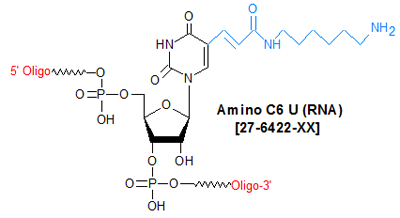 picture of Amino C6 U (RNA)