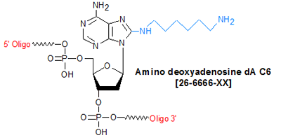picture of Amino deoxyadenosine dA C6