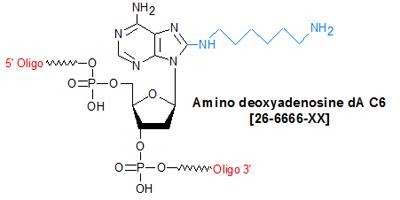 picture of Amino deoxyadenosine dA C6