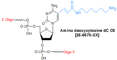 picture of Amino deoxycytosine dC C6