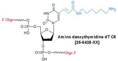 picture of Amino deoxythymidine dT C6