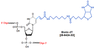 picture of Biotin deoxythymidine dT