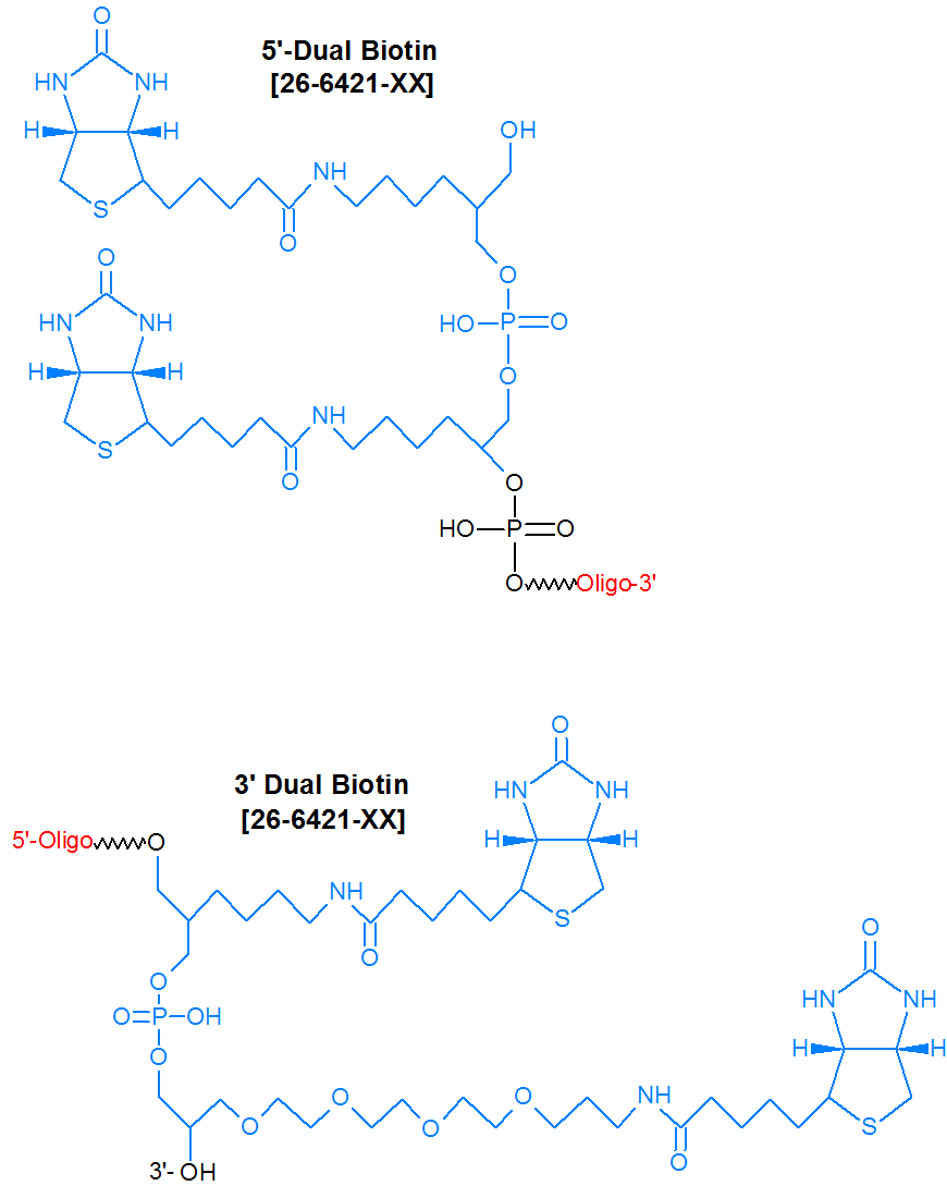 picture of Biotin multiple additions