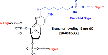 picture of Brancher levulinyl 5-me dC