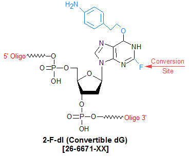 picture of Convertible dG (2-Fluoro deoxy inosine)