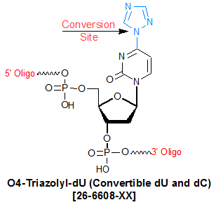 picture of Convertible dU (O4 Triazolyl dU)
