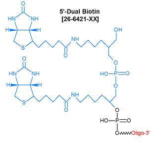 picture of Dual Biotin