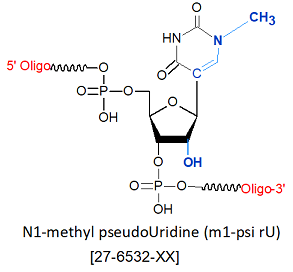 picture of N1-methyl pseudoUridine (m1-psi rU)