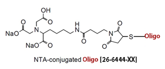 picture of NTA (Nitrilotriacetate) Oligo Conjugate