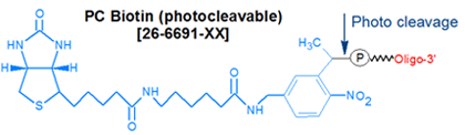 picture of PC Biotin (photocleavable)