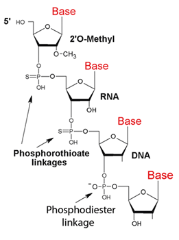 picture of phosphorothioate