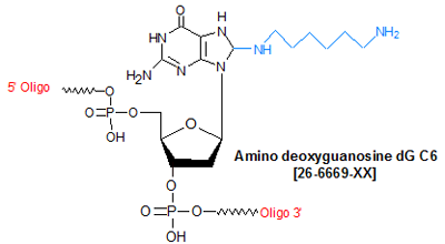 picture of Amino deoxyguanosine dG C6