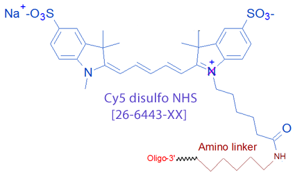 picture of Cy5 disulfo NHS
