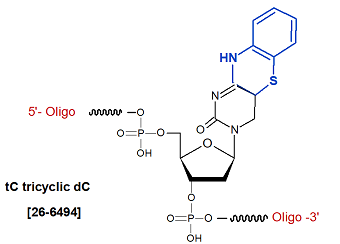picture of tC tricyclic dC Analogs