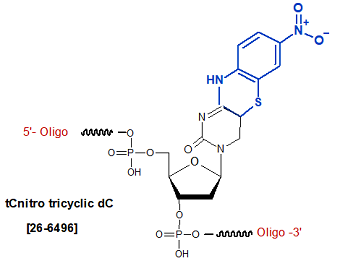 picture of tCnitro tricyclic dC Analogs