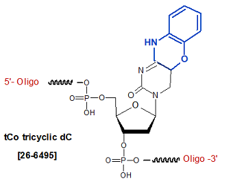 picture of tCo tricyclic dC Analogs
