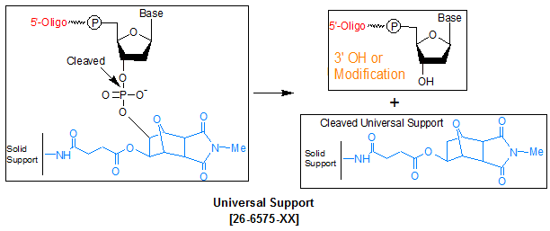 picture of Universal Support